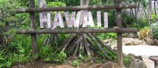Гавайи - отдых - море - пляж - фото