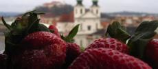 Город Брно - прогулка по Чехии - фото flickr.com