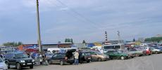 Ярмарка птиц - Ростов-на-Дону