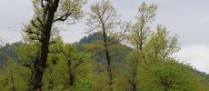 Талыш и Талышские горы - Азербайджан