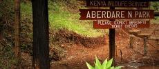 Фото национального парка Aberdare