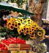 Прованс - земля гостеприимная, солнечная дарящая радость жизни