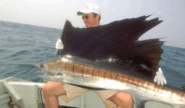 ОАЭ - рыбалка в Персидском заливе