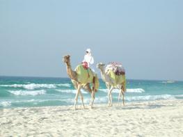 Советы и рекомендации туристам в ОАЭ