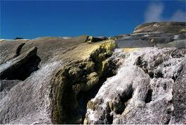 Роторуа - главная достопримечательность Новой Зеландии