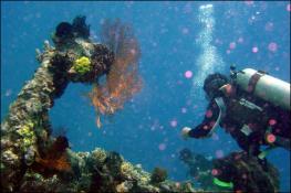 Местечко Туламбен на севере Бали (130 км от Санура)