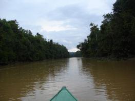 Кинабатанган - река Малайзии