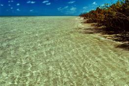 В атолле Дахаалу (Dhaalu) имеются 8 обитаемых островов
