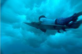 Мальдивы идеально подходят для серфинга