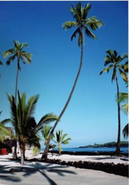 Гавайские острова - царство вулканов и океанской стихии