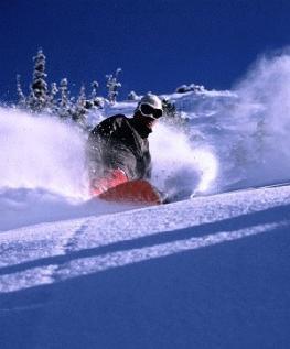 Альта и Сноубёрд (Alta & Snowbird) - горнолыжный курорт США