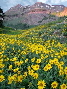 Природа США: горы, равнины, реки, озера