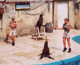 Зоопарк морских животных Mundomar Benidorm