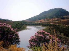 Чедрино - Cedrino - река Италии