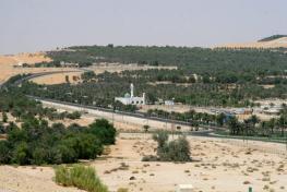 Оазис Лива - Liwa