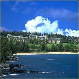 Отель Ritz-Carlton Golf Resort Hotel