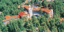 Отель Forest Park