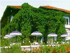 Отель Оазис