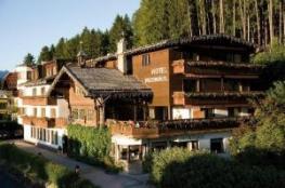 Отель Batzenhausl
