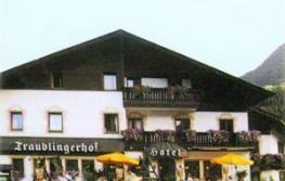 Отель Traublingerhof