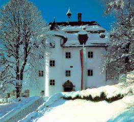 Отель Schloss Ledenberg