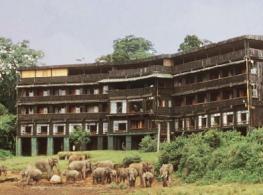 Отель Serena Mountain Lodge