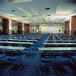Греция Халкидики Отель ATHOS PALACE