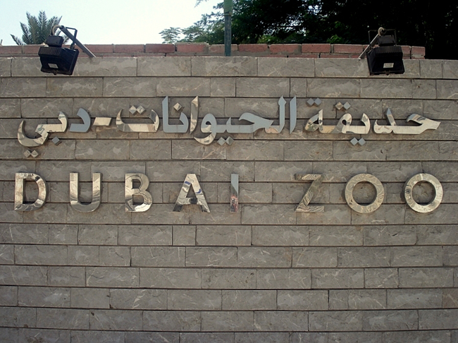 Зоопарк в Дубае - фото