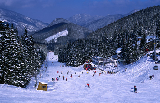 Карпаты - горы зимой