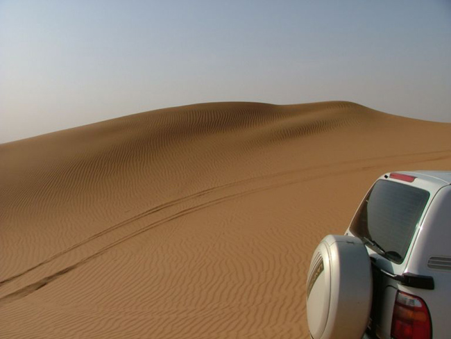 Сафари в Эмиратах - фото emirat.ru