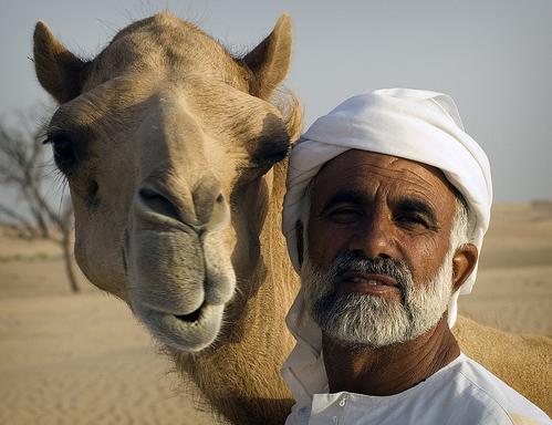 Абу-Даби - ОАЭ - фото курорта