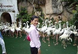 Малайзия: Курорт А-Фамоза