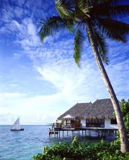 Мальдивы: туры на Новый год