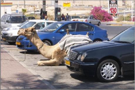 Припарковался удачно!