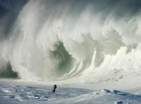 Волна!!!