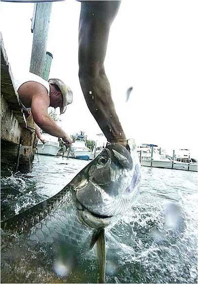 Рыба цапнула за руку :)