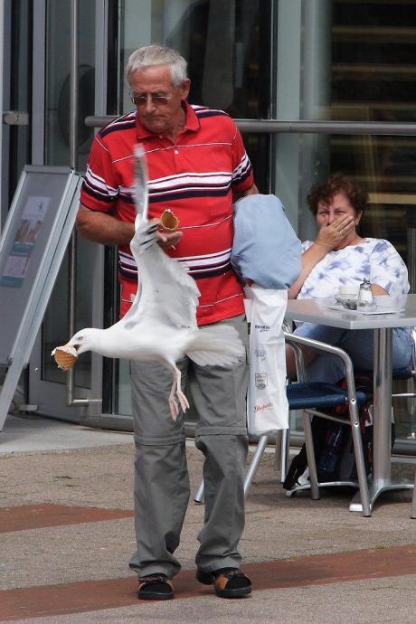 Голодная птичка :)