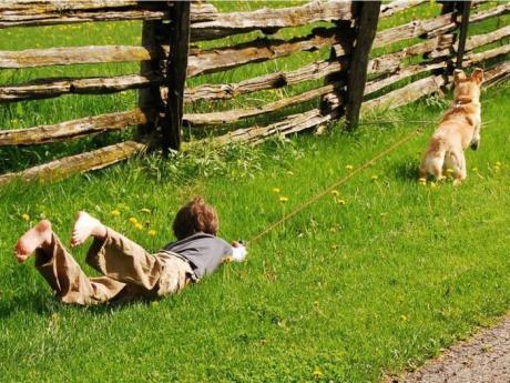 Детский отдых :)