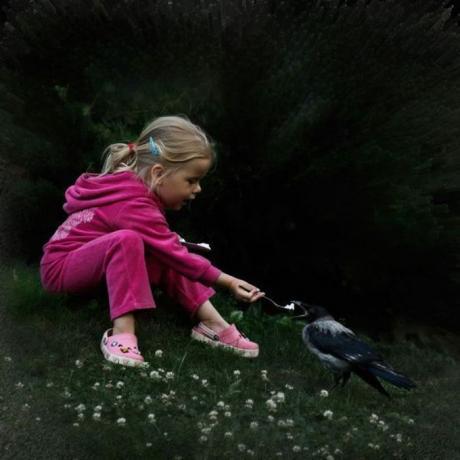 Любовь к птичкам :)