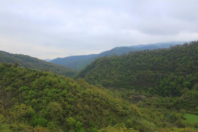 Талышские горы - Ярдымлинский район