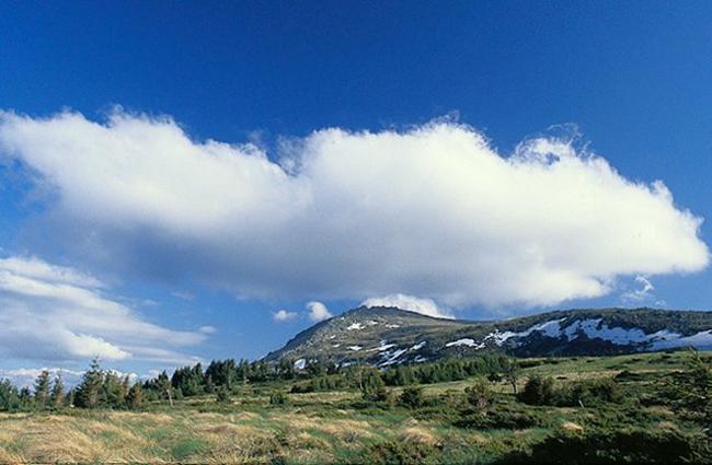 Болгария, парк Витоша, фото