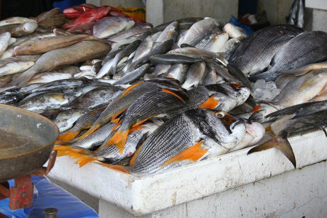 Шарджа - рыбный базар - фото flickr.com