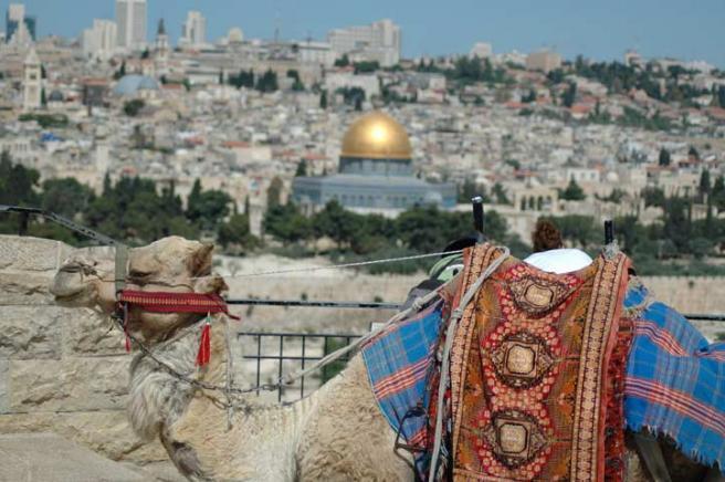 Вид на Ирусалим - жизнь прекрасна!