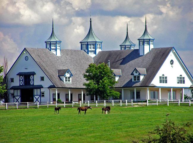 Штат Кентуки - лошади - фото США