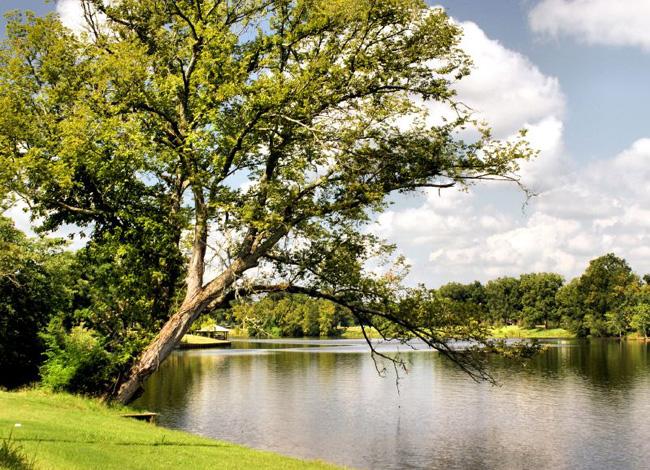 Штат Луизиана - фото США