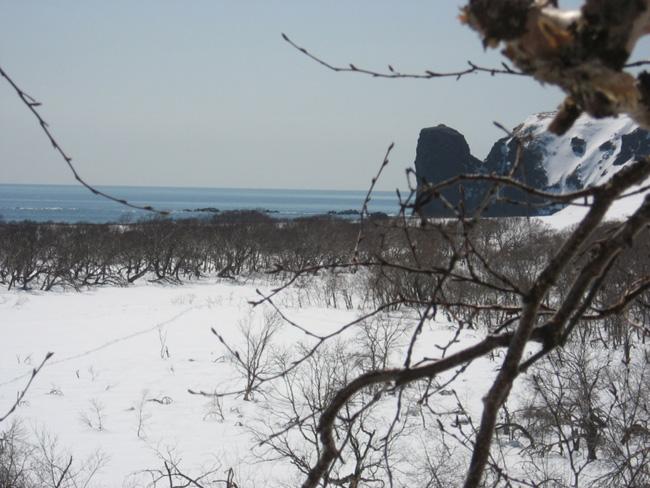 Камчатка - море - фото
