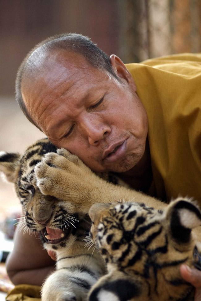 Таиланд - монахи - фото