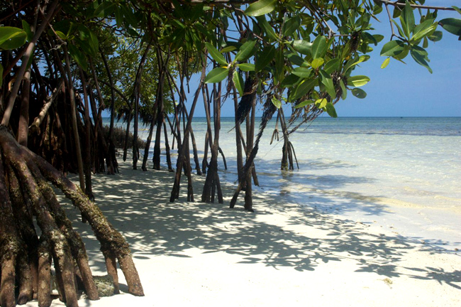 Куба - Кайо Санта Мария - пляж