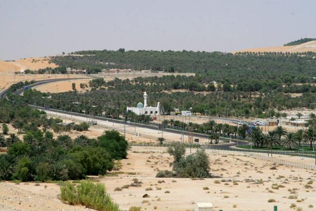 Оазис Лива - 2-3 часа езды на машине из Абу Даби