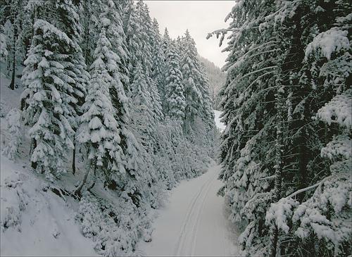 Банско, фото курорта Болгарии, зима